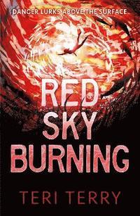 bokomslag Red Sky Burning