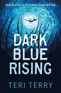 bokomslag Dark Blue Rising