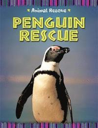 bokomslag Animal Rescue: Penguin Rescue