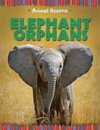 bokomslag Animal Rescue: Elephant Orphans