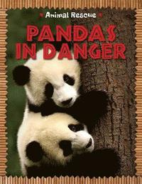 bokomslag Animal Rescue: Pandas in Danger