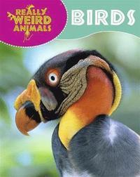 bokomslag Really Weird Animals: Birds