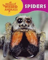 bokomslag Really Weird Animals: Spiders