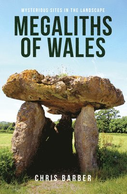 bokomslag Megaliths of wales - mysterious sites in the landscape