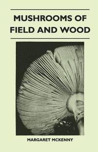 bokomslag Mushrooms Of Field And Wood