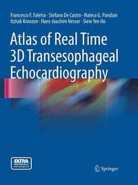 bokomslag Atlas of Real Time 3D Transesophageal Echocardiography