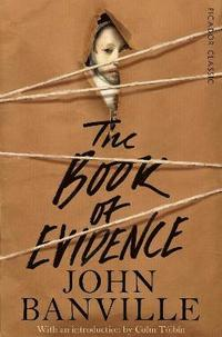 bokomslag Book of evidence