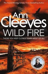 bokomslag Wild Fire