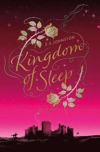 bokomslag Kingdom of Sleep