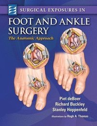 bokomslag Surgical Exposures in Foot &; Ankle Surgery