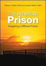 bokomslag The American Prison