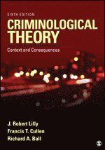 bokomslag Criminological Theory: Context and Consequences