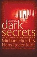bokomslag Dark Secrets