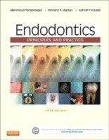 bokomslag Endodontics: Principles and Practice