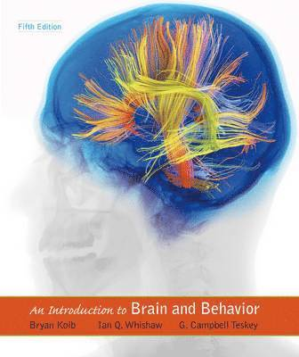 bokomslag An Introduction to Brain & Behavior