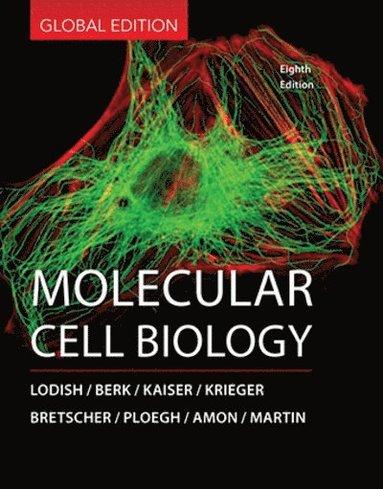bokomslag Molecular cell biology