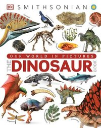 bokomslag Dinosaur Book