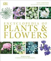 bokomslag Encyclopedia Of Plants And Flowers
