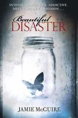 bokomslag Beautiful Disaster