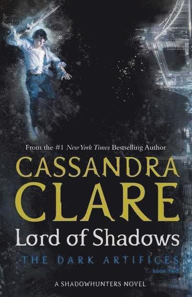 bokomslag Lord of Shadows