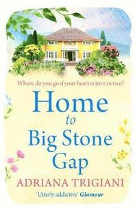bokomslag Home to Big Stone Gap