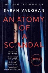 bokomslag Anatomy of a Scandal