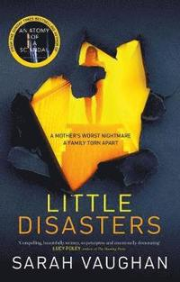 bokomslag Little Disasters