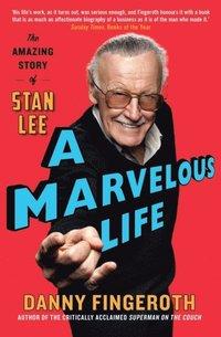 bokomslag Marvelous Life