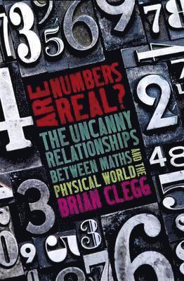 bokomslag Are Numbers Real?