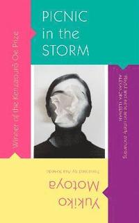 bokomslag Picnic in the Storm