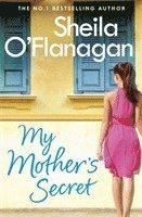 bokomslag My Mother's Secret