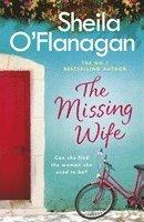 bokomslag The Missing Wife