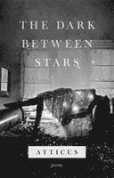 bokomslag The Dark Between Stars
