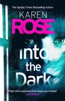 bokomslag Into the Dark