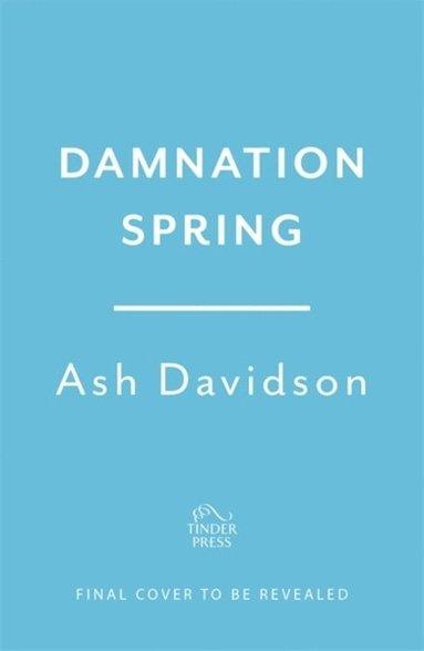 bokomslag Damnation Spring