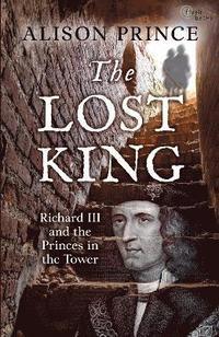 bokomslag The Lost King