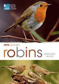 bokomslag RSPB Spotlight: Robins