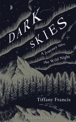 bokomslag Dark Skies: A Journey into the Wild Night