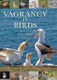 bokomslag Vagrancy in Birds