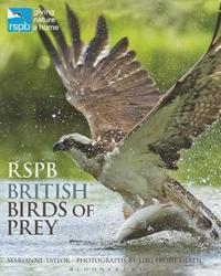 bokomslag RSPB British Birds of Prey