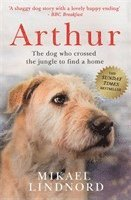 bokomslag Arthur
