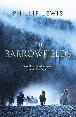 bokomslag The Barrowfields