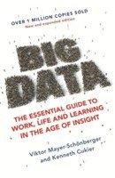 bokomslag Big Data
