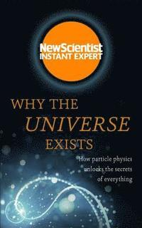 bokomslag Why the Universe Exists: How Particle Physics Unlocks the Secrets of Everything