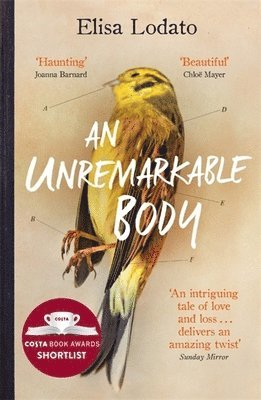 bokomslag An Unremarkable Body: A stunning literary debut with a twist