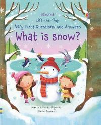 bokomslag What is Snow?