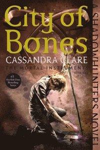 bokomslag City Of Bones