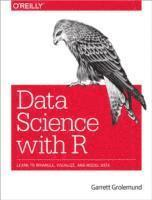 bokomslag R for Data Science: Visualize, Model, Transform, Tidy, and Import Data