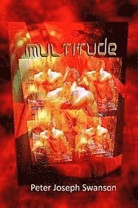 bokomslag Multitude