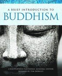 bokomslag A Brief Introduction to Buddhism